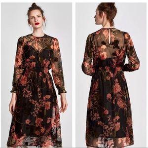Zara NWT Velvet Floral Midi Blogger Fave Dress